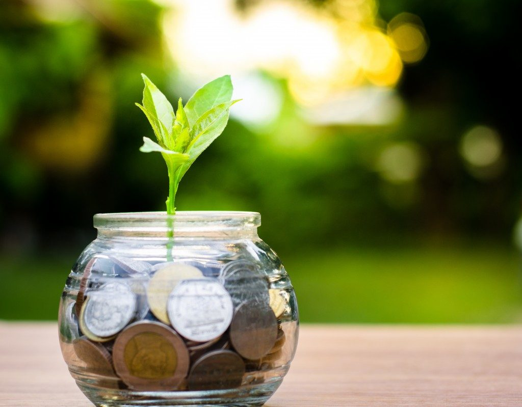 glass jar filled with coins, a leaf sprouting from the bottom