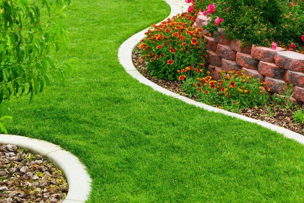 nice green lawn
