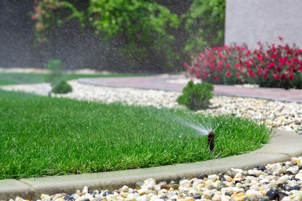 sprinkler on the lawn